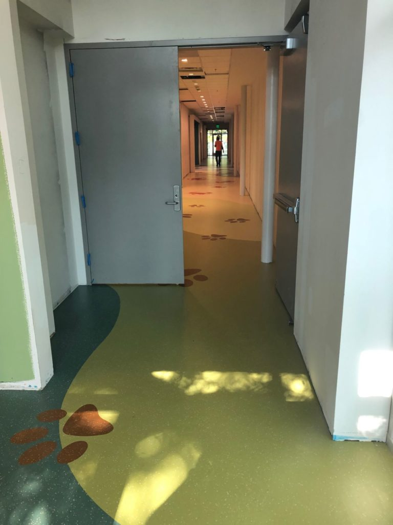 VCT Flooring Dog Paw Hockaday Hallway ENSO